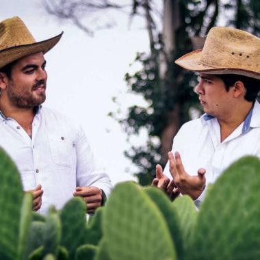 L'ecopelle vegana prodotta dai cactus